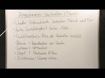 Lernvideo, Nachhilfevideo - Angeborenes Verhalten Tiere